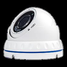 Гібридна Антивандальна камера GV-098-GHD-H-DOF50V-30