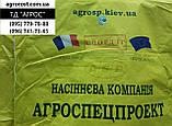 Подсолнечник СВОРД ИР Маисадур под Евролайтинг. Гибрид СВРОД устойчив к заразихе семи расам A-G+ Урожай 49ц/га, фото 2