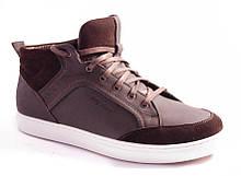 Ботинки мужские коричневые Vlad XL 8212-0077