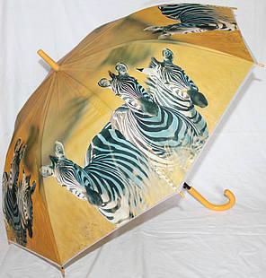 Зонт-трость женский SR K355 зебра, фото 2