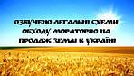 Озвучено легальні схеми обходу мораторію на продаж землі в Україні