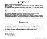 Комплект карток Комахи з фактами, фото 4