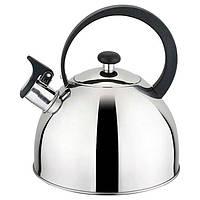 Чайник зі свистком 2,5 л, Gusto GT-1402-25 (77342)