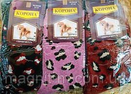 """Жіночі шкарпетки """"Корона"""". Верблюжа шерсть. Кішечки. №B2356."""