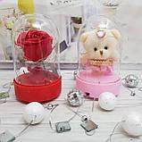 """Ведмедик в колбі світильник іграшка """"Плюшевий Ведмедик"""", фото 4"""