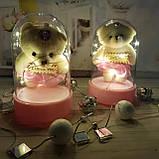 """Ведмедик в колбі світильник іграшка """"Плюшевий Ведмедик"""", фото 2"""