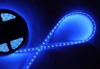 Лента светодиодная синяя 3528
