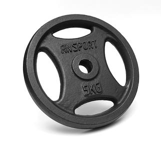 Блін (диск) RN-Sport 5 кг для гантелі (штанги) з Quatro хватом під гриф Ø25мм