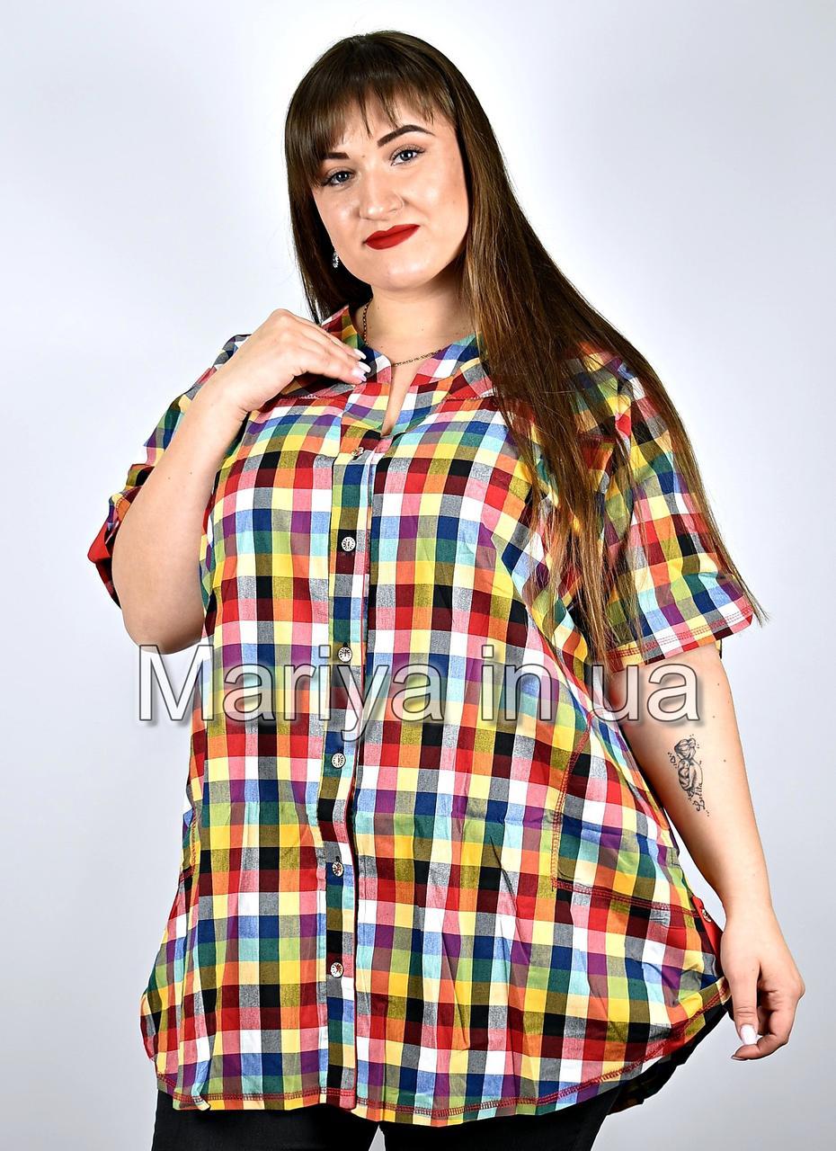 Сорочка жіноча від 52 до 66 великі розміри