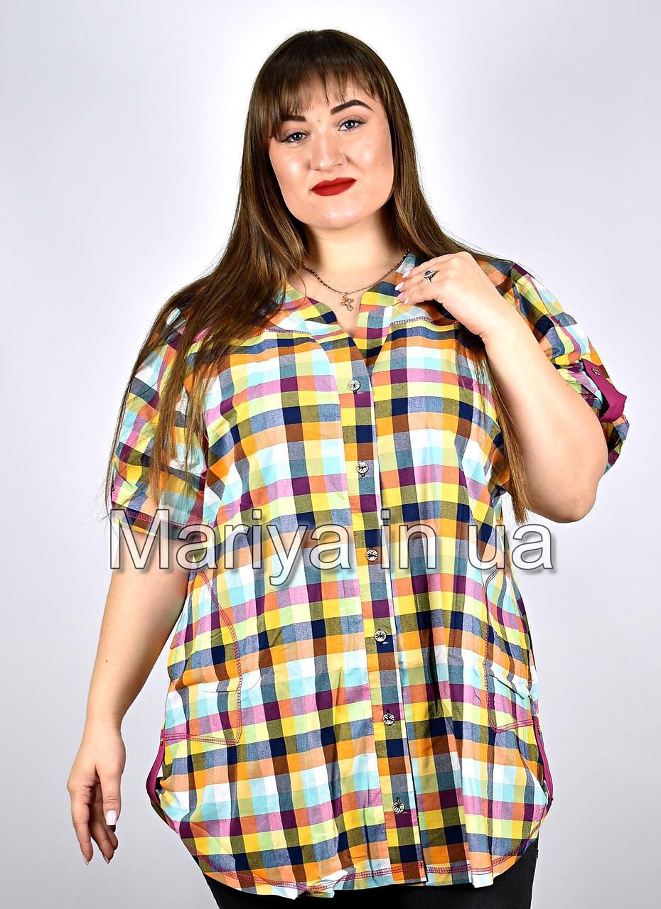 Рубашка женская от 52 до 66 большие размеры