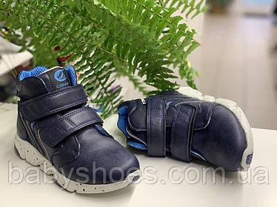 Демисезонные ботинки для мальчика Clibee,Польша. р.32-37,  ДМ-227