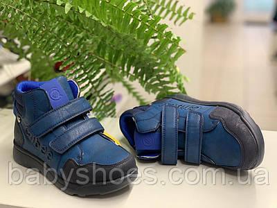 Демисезонные ботинки для мальчика Clibee,Польша. р.32-36,  ДМ-228
