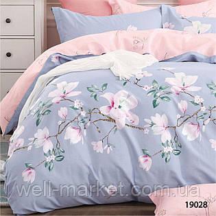 Комплект постельного белья ранфорс 19028