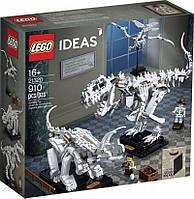 Блоковий конструктор LEGO Окаменелости динозавров (21320), фото 1