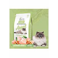 Гипоаллергенный корм Brit Care Cat Angel I am Delighte с курицей и рисом для пожилых кошек (старше 7 лет) 2 кг