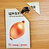"""Насіння цибулі """"Ткаченковский"""", фото 5"""