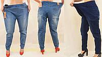 Джинсы/Джеггинсы  женские с потертостями в очень больших размерах 8XL,9XL,10XL Ласточка  Синий/Голубой