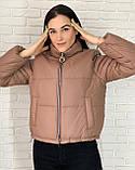 Жіноча весняна куртка 26-960, фото 3