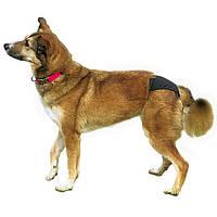 Труси для собак Trixie, чорні, 24-31см