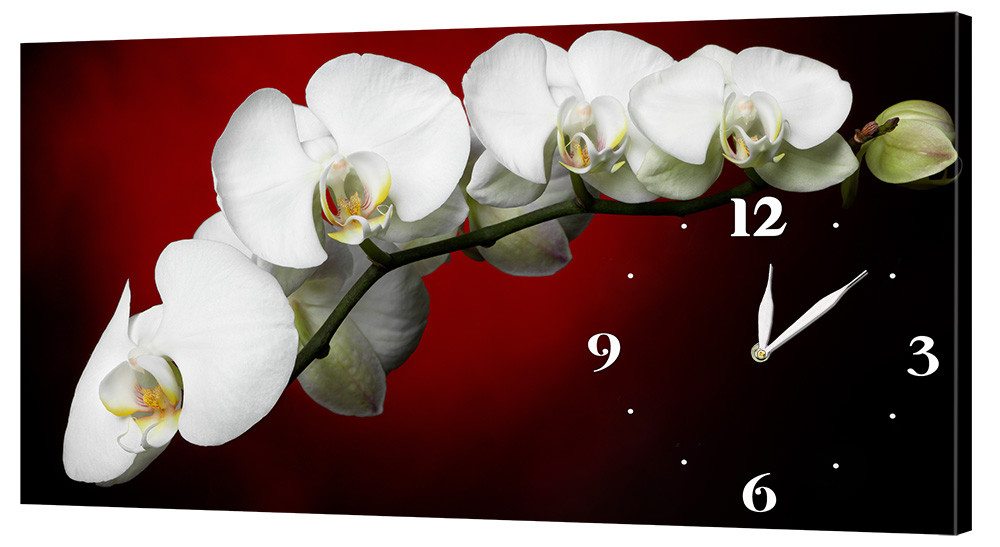 Настенные часы Декор Карпаты 53х29 Белые Орхидеи (53х29-c22)