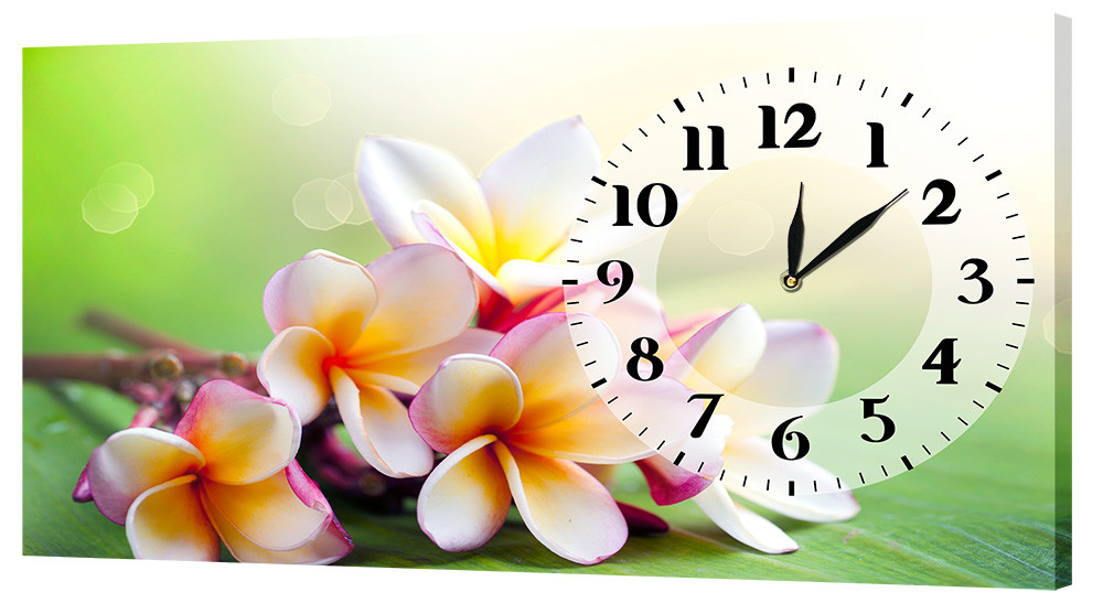 Настенные часы Декор Карпаты 24х44 Разноцветный (24х44-c528)