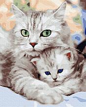 Картина по Номерам Мама с котенком 40х50см RainbowArt