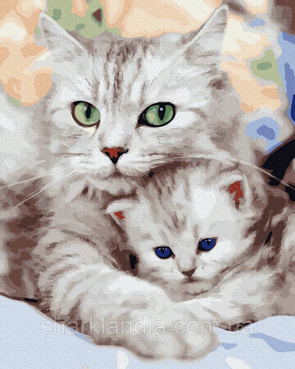 Картина по номерам Мама с котенком 40х50см RainbowArt Кот