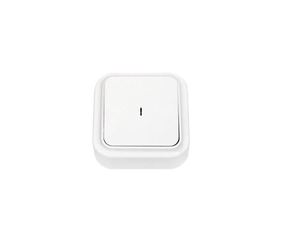 """BYLECTRICA """"Пралеска"""" Выключатель наружный с подсветкой 10А белый (А1 10-214)"""