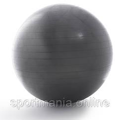 Мяч гимнастический ProForm (75 см) PFIFB7513