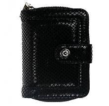 Жіночий гаманець Valenta Double Rich Mini Чорний Змія (ХР85117)