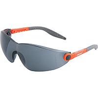 Очки защитные V6100