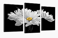 Модульная картина DK Store Белые цветы 70x110 см (530_3)
