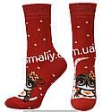 Носки оптом женские махровые на резинке, фото 2