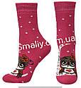 Носки оптом женские махровые на резинке, фото 4