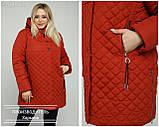Куртка жіноча демісезонна великого розміру Україна Розміри: 50-52, 54-56, 58-60, 62-64, фото 6