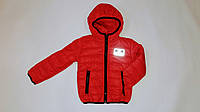 Детская куртка на ситепоне светоотражающие значки 92-116 см синтепон, фото 1