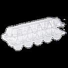 Пластикова упаковка на 10 яєць ПЕТ прозорий, фото 2