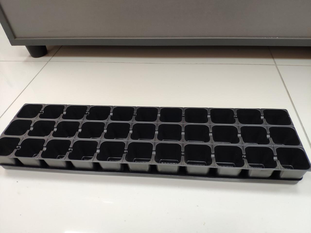 Касета для розсади на 33 комірки