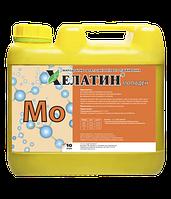 Хелатин Молібден 5% 10 л. Хелатин Молібден