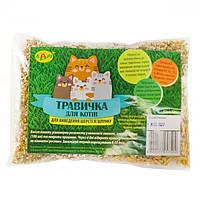 Трава для котів 100г п/е упаковка