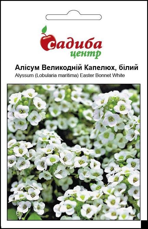 Аліссум Великодній Капелюх (білий) насіння аліссума (Pan American) 0.1 г