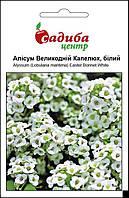 Аліссум Великодній Капелюх (білий) насіння аліссума (Pan American) 0.1 г, фото 1