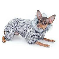 Комбинезон МИМОЗА для собак