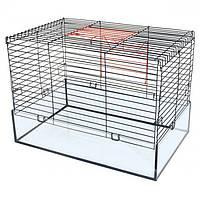 Клітка для середніх гризунів Кролик-100 Glass фарба