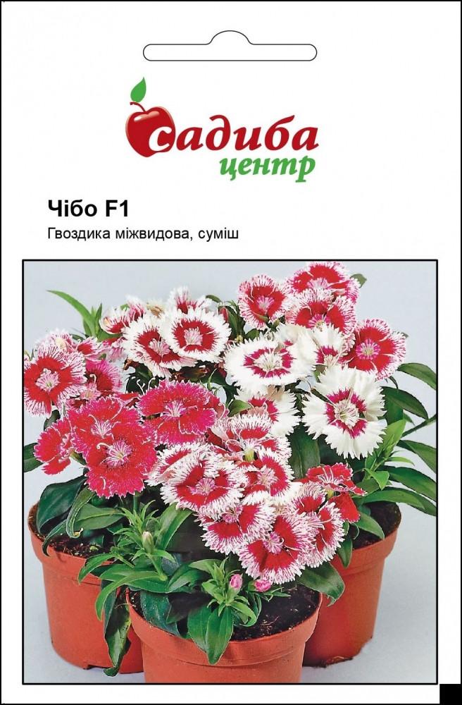 Чіба F1 (Чібо F1) суміш (mix) насіння гвоздики міжвидової (Hem Genetics) 10 шт