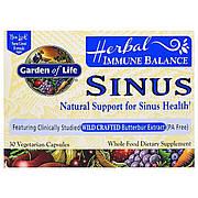 Травяной Комплекс для поддержки иммунитета, Herbal Immune Balance Sinus, Garden of Life, 30 вегетарианских