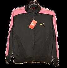 Кофты, блузы, регланы, толстовки, бомберы, пиджаки, спортивные куртки женские
