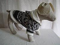 "Толстовка для собак ""Зима """