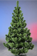 Европейская зеленая ель 90 см