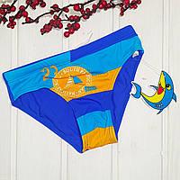 Плавки  купальные для мальчика Teres  голубые Размеры 122-128 134-140